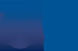 Alamo City STAT logo